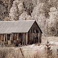 Fall Cabin - Sepia by Jonathan Hansen
