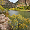 Fall Color At Hanging Lake Rest Area In Glenwood Canyon by Ray Mathis