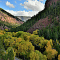 Fall Colors Along Highway 145 Near Sawpit Co by Ray Mathis