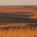 Fall Colors  Flint Hills Prairie I by Jeff Phillippi