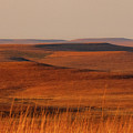 fall Colors  Flint Hills Prairie III by Jeff Phillippi