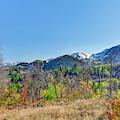 Fall Colors Near Sundance by Jim Thompson