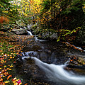 Fall Colors Sandwich New Hampshire by Jeff Folger