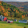 Fall Foliage At Hillside Acres by Kristen Wilkinson