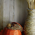 Fall Harvest Still Life by Perry Correll