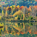 Fall Kaleidoscope by Christina Rollo