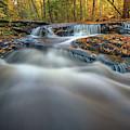 Fall Morning At Vaughan Brook. by Rick Berk