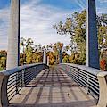 Fall Panorama Of Carruth Pedestrian Bridge At Buffalo Bayou Park - City Of Houston Southeast Texas by Silvio Ligutti