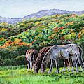 Fall Ranch Grazing Horses  by Irina Sztukowski