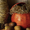 Fall Still Life by Perry Correll