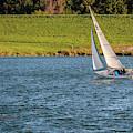 Fall Sunday Sail by Edward Peterson