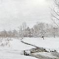 Fallbrook Meadow by Rod Best