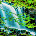 Falls Behind Spring Trees by Paul W Faust - Impressions of Light