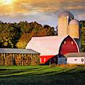 Family Farm by Scott Kemper
