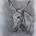 Family Mule by Larry Lerew