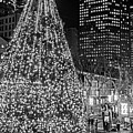 Faneuil Hall Christmas Tree 2018 Boston Ma Black And White by Toby McGuire