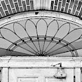 Fanlight Transom Window Black And White by Lisa Wooten