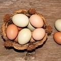Farm Fresh Eggs In Wicker Basket by Sheila Brown