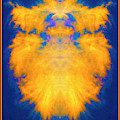 Feathers Of Fire by Paul W Faust - Impressions of Light