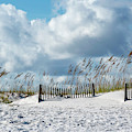 Fences In The Sand by Robert Anderson