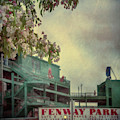 Fenway Park Spring  by Joann Vitali