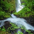 Fern Falls by Darren White