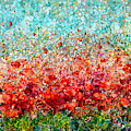 Field Of Spring Poppies By Olena Art  by OLena Art - Lena Owens