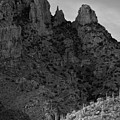 Finger Rock Canyon Black And White by Chance Kafka