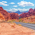Fire Canyon Road Valley Of Fire by Kristia Adams