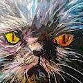 Fire Eyes by Paula Baker