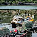 Fishing Boat In Plockton, Scotland by Arterra Picture Library