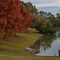 Fishing Hole - Autumn by Dale Powell