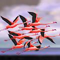 Flamingos In Flight  by David Arrigoni