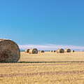 Flat Field Of Bales by Todd Klassy