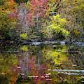 Floating In Autumn Colors by Debra and Dave Vanderlaan