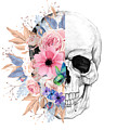 Floral Skull 2 by Nina Ficur Feenan