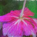 Flower Bottom by Bill Posner