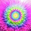 Flowering Mandala by Barry Costa