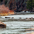 Fly Fishing The Platte In The Colorado Rockies by Steve Krull