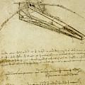 Flying Machine, Codex Atlanticus By Leonardo Da Vinci by Leonardo Da Vinci