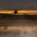 Flying Over Crane Pond by Susan Warren