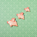Flying Pig Ornaments On Wallpapered by Peter Dazeley