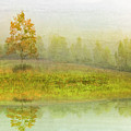 Foggy Meadow II by Debra and Dave Vanderlaan
