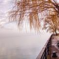 Foggy Niagara by Jim Lepard