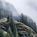 Foggy On Saddle Mountain by Robert Potts