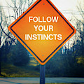 Follow Your Instincts- Art By Linda Woods by Linda Woods