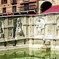 Fonte Gaia In Siena by John Rizzuto