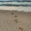 Footprints At Sunset by Alissa Beth Photography