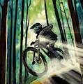 Forest Jump Mountain Biker by Sassan Filsoof