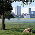 Fort Worth Morning V3 040619 by Rospotte Photography